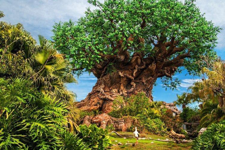 Disney's Animal Kingdom Park en Orlando Florida
