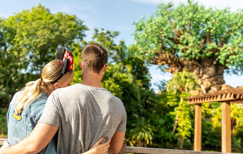 Disney y orlando viajes post pandemia